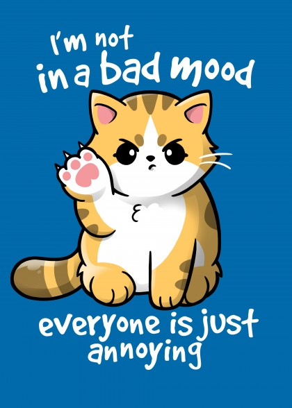 Bad mood cat