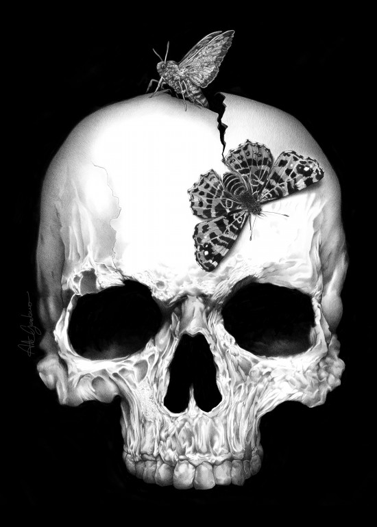 SKULL AND SOUL, skull, soul, black and white, dark, darkness, moth