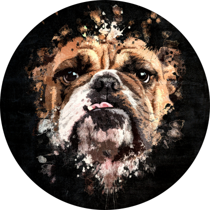 Bulldog Splatter Painting