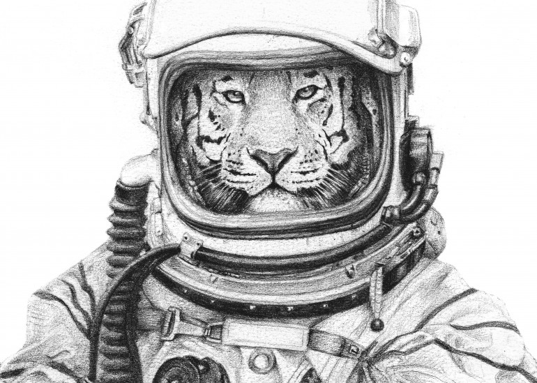 Apollo 18, wild, wildlife, wild animals, wild animal, retro, vintage, old, old poster, old picture, animals, animal, forest, forests, woods, jungle, safari, lion, lions, tiger, tigers, astronaut, astronauts, space, moon, stars, star, universe