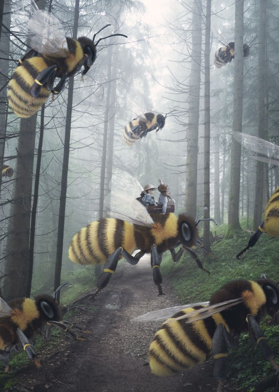The Migration, bee, wasp, adventure, yellow, forest, wood
