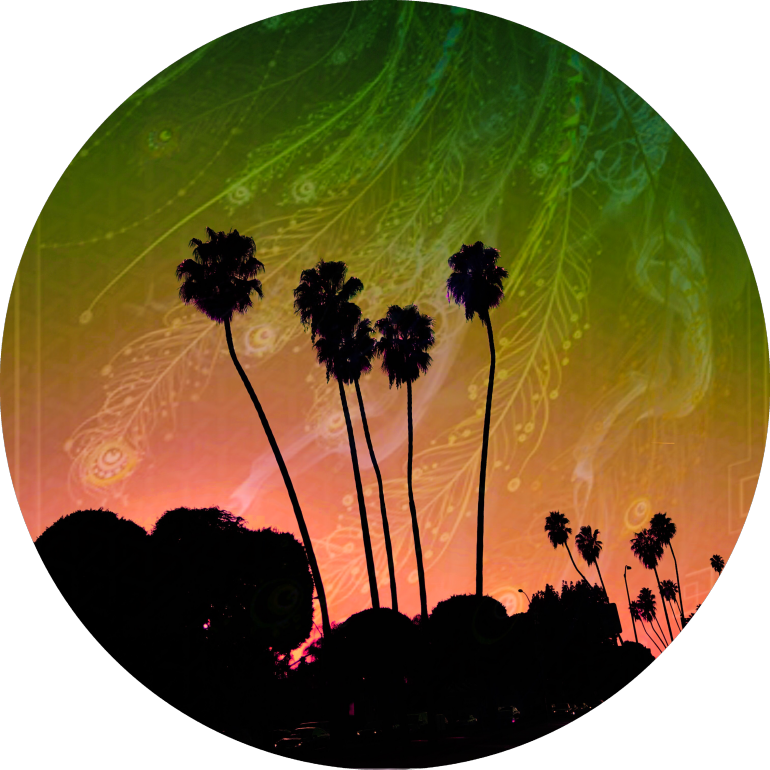 LOST ANGELS, Losangeles, palms, visionary, angels, trippy, city